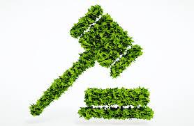 Regulación y Fiscalización Ambiental - AMB-008