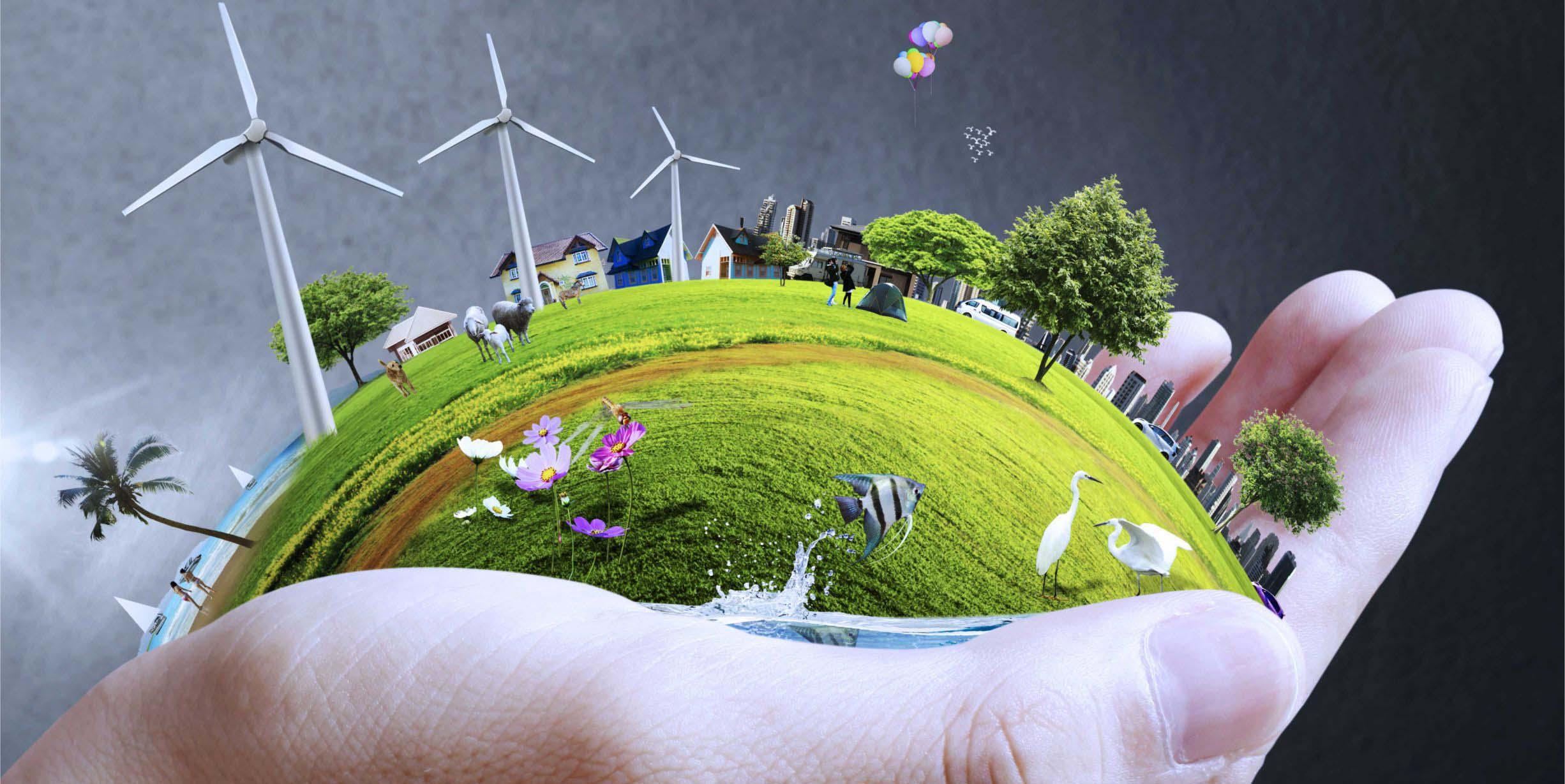 Desarrollo Sostenible - AMB-013