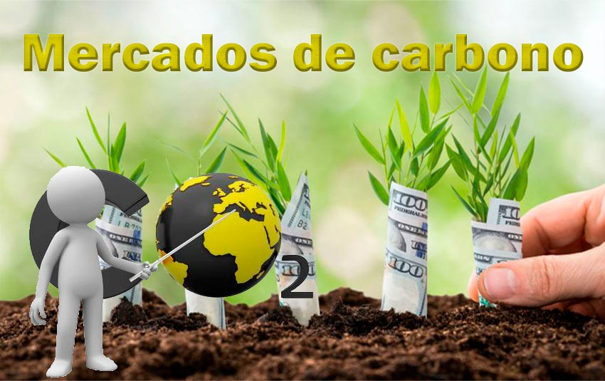 Mercado de Carbono -AMB-025