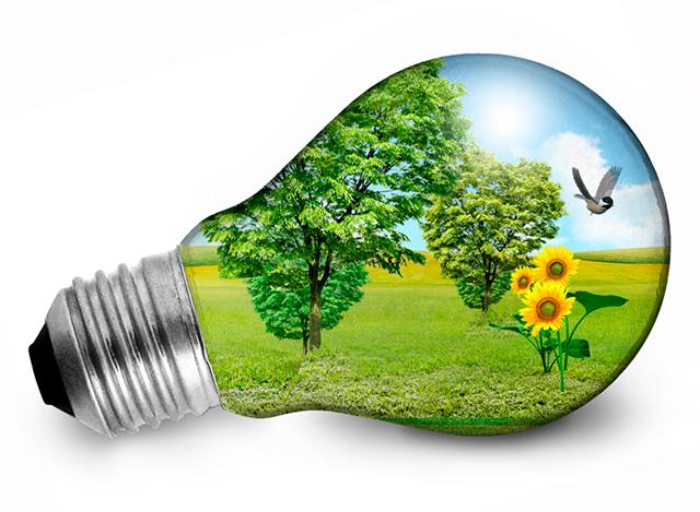 Gestión de Eficiencia Energética -ELC-006
