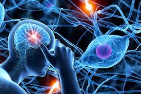 Neuropsicología clínica -SPS-010